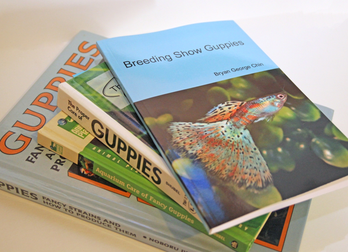 Breeding Show Guppies -- Book Overview