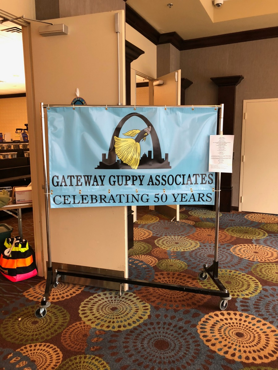 Gateway Guppy Associates -- IFGA Annual